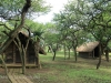 Tala Private Game Reserve - Picnic site - Pool - Bashers -  (8)