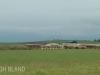 Tala Private Game Reserve - Sawmill -  (2)