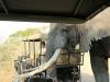 Tembe Elephant Park - Elephant (13)