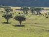 hlalanathi-farm-scenes-2