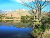 tendele-trout-dam-and-reflections-53