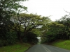 tongaat-amanzinyama-local-roads-5