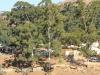Jameson Drift Road - Dlolwana Store - 28.41.784 S 30.41.490 E (2)
