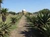 ulundi-battle-site-monument-s-28-18-39-e-31-25-31-elev-529m-19