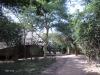 Umfolosi - Centenary Game Capture Centre -  (47)