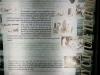 Umfolosi - Centenary Game Capture Centre - displays (20)