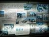 Umfolosi - Centenary Game Capture Centre - displays - Bonga Maziya