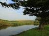 Illovo River Picnic site - S 30.06.396 E 30.50 (2)
