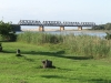 illovo-bridge-n2-views-8-illovo-road-s-30-06-684-e-30-50-969-elev-31m-7