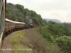 Umgeni Steam Railway en route to Inchanga (1)