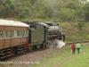 Umgeni Steam Railway en route to Inchanga (10)