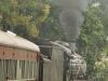 Umgeni Steam Railway en route to Inchanga (2)