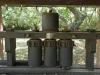 umhlali-compensation-morewood-old-sugar-mill-s-29-30-015-e-31-10224-elev-64-m-5