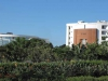 Umhlanga Ridge - Offices off Armstrong Avenue (1)