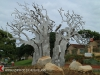 Izinga Ridge entrance Baobab (2)