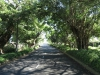 umhlanga-new-town-centenary-boulevard-30