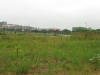 umhlanga-new-town-centre-umhlanga-ridge-boulevard-views-open-space-10