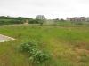 umhlanga-new-town-centre-umhlanga-ridge-boulevard-views-open-space-2_0