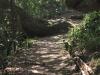 Hawaan Nature  Reserve - trails (2)