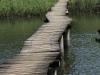 Hawaan Nature  Reserve - trails (5)