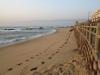 umdloti-main-beach-s-29-39-918-e-31-07-327-elev-10m-3