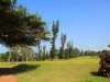 Umkomaas Golf Club - fairway views (1)
