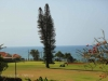 Umkomaas Golf Club - fairway views (8)
