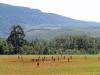 Centocow Mission  - Sports Fields (1)