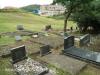 St Patricks Church grave  Adams & Goldstone  (181)