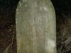 St Patricks Church grave   Harriet Loose (91)