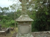 St Patricks Church grave  Jane Knox 1884 (22)