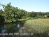 Umzimkulu River Lodge - river frontage (4)