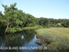 Umzimkulu River Lodge - river frontage (9.) (3)