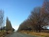 underberg-to-bulwer-road-views-4