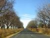 underberg-to-bulwer-road-views-9