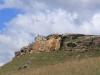 Drakensberg Gardens - Baboons (2)