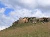 Drakensberg Gardens - Baboons (3)
