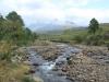 Drakensberg Gardens - River walk (3)