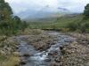 Drakensberg Gardens - River walk (4)