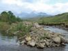 Drakensberg Gardens - River walk (6)