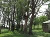 van-reenen-st-josephs-catholic-church-sand-river-valley-manse-1