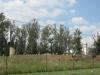 van-reenen-st-josephs-catholic-church-sand-river-valley-outbuildings-10