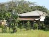 Canelands - Ndwedwe - Tongaat Roads - 29.38.085 S 31.03.074 E