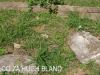 Verulam Cemetery grave  broken grave