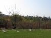 Oakford Priory - Graveyard & Memorials - Graveyards Plaques (1)