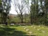 Oakford Priory - Graveyard & Memorials - Graveyards Plaques (2)