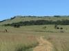 vryheid-hill-nature-reserve-lt-col-gawne-site-kings-own-regt-royal-lancaster-regt-s-27-45-53-e-30-57-11-dec-1900-5