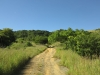 vryheid-hill-nature-reserve-s-27-45-14-e-30-47-4