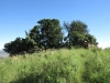 vryheid-hill-nature-reserve-south-gun-site-s-27-44-50-e-30-47-48-3