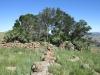 vryheid-hill-nature-reserve-south-gun-site-s-27-44-50-e-30-47-48-6